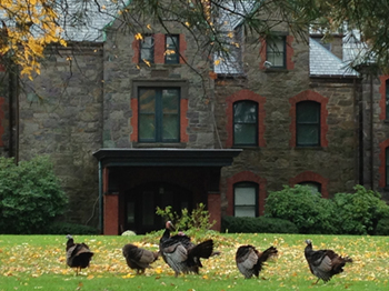 Thanksgiving with Mary Baker Eddy