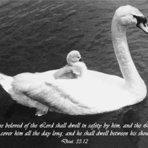Longyear Blessing