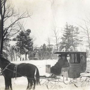 Mrs. Eddy Sleigh rides article